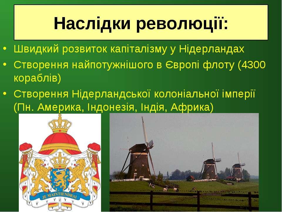 Швидкий розвиток капіталізму у Нідерландах Створення найпотужнішого в Європі ...