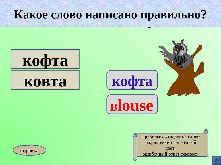 Какое слово написано правильно? кофта Blouse кофта ковта Какое слово написано...