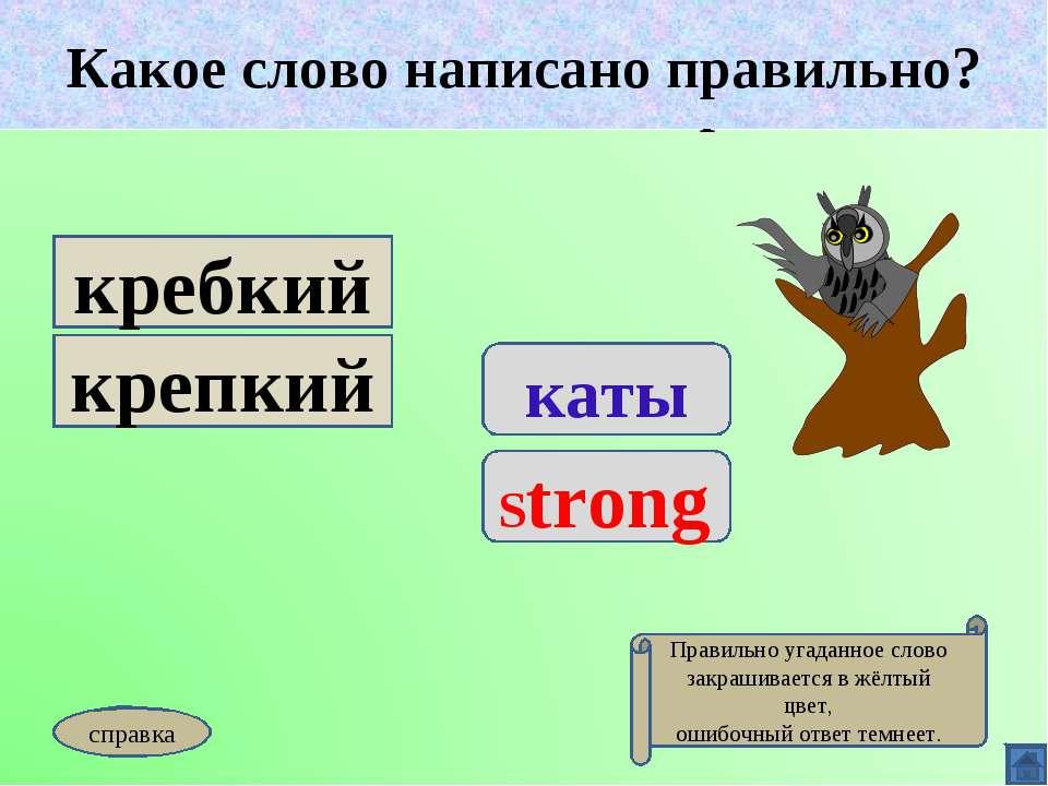 Какое слово написано правильно? каты Strong кребкий крепкий Какое слово напис...
