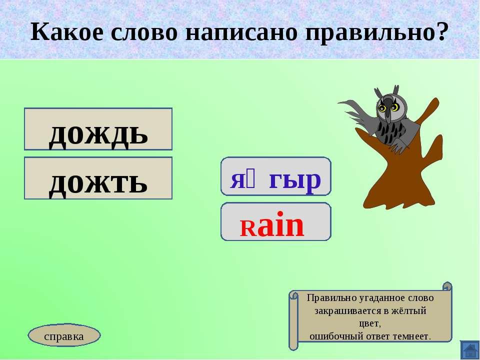 Какое слово написано правильно? Яңгыр Rain дождь дожть Какое слово написано п...