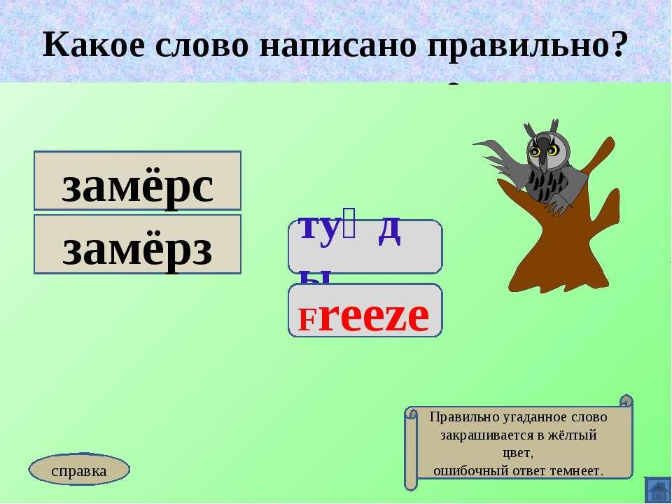 Какое слово написано правильно? туңды Freeze замёрс замёрз Какое слово написа...