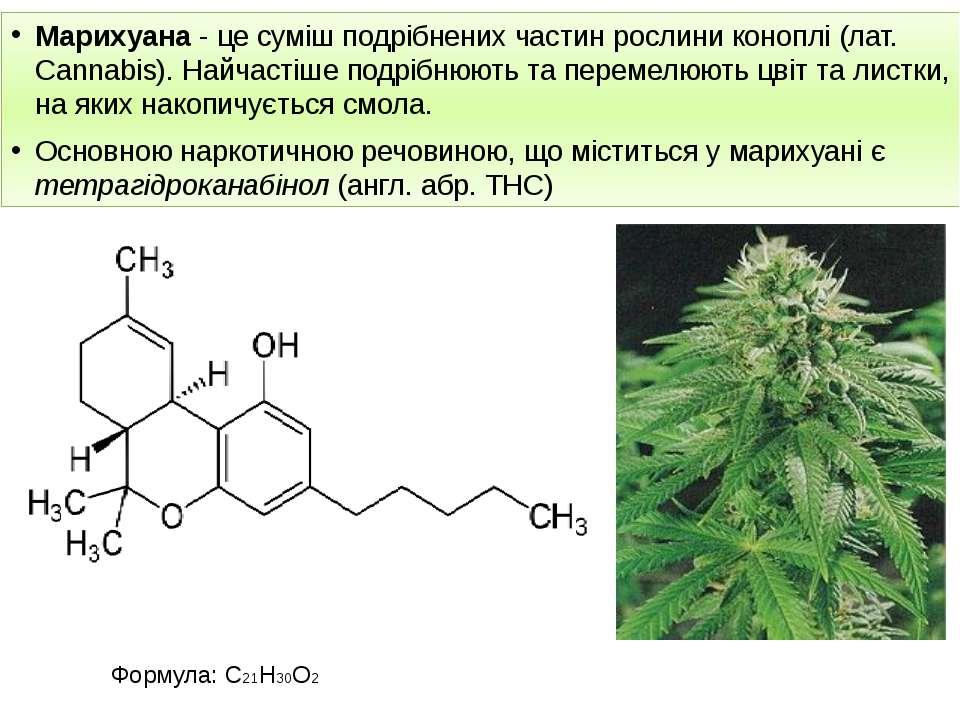 Марихуана - це суміш подрібнених частин рослини коноплі (лат. Cannabis). Найч...