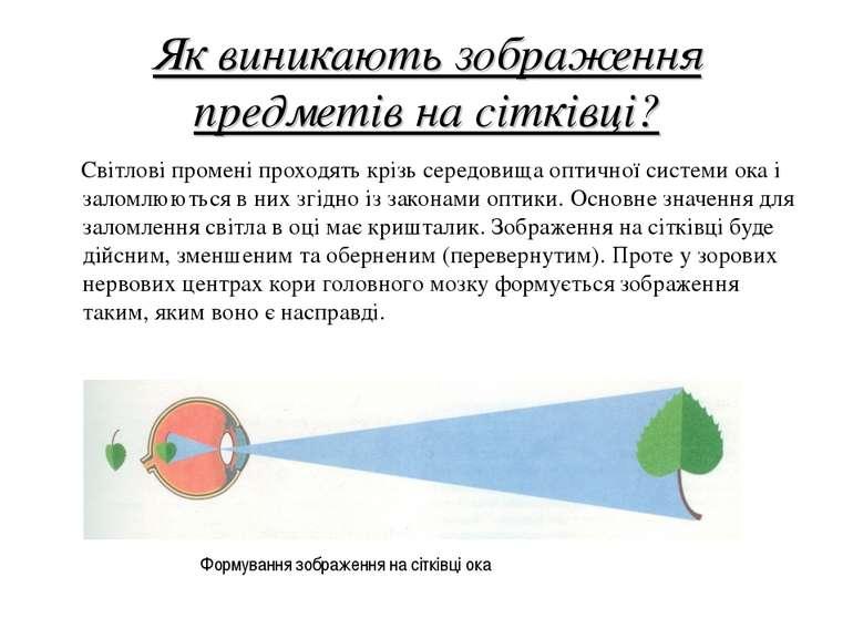 Як виникають зображення предметів на сітківці? Світлові промені проходять крі...
