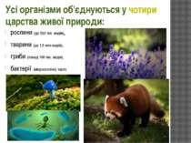 Усі організми об'єднуються у чотири царства живої природи: рослини (до 500 ти...