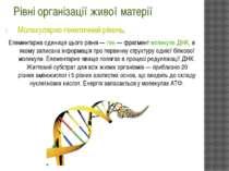 Рівні організації живої матерії Молекулярно-генетичний рівень. Елементарна од...