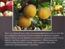 Неші - це гібрид яблука і груші, культивований багато століть в Азії. Ще його...