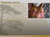 Червона книга Серед найважливіших заходів щодо охорони тварин слід назвати та...