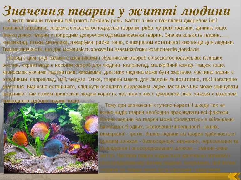Значення тварин у житті людини В житті людини тварини відіграють важливу роль...