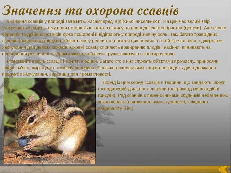 Значення та охорона ссавців Значення ссавців у природі залежить, насамперед, ...