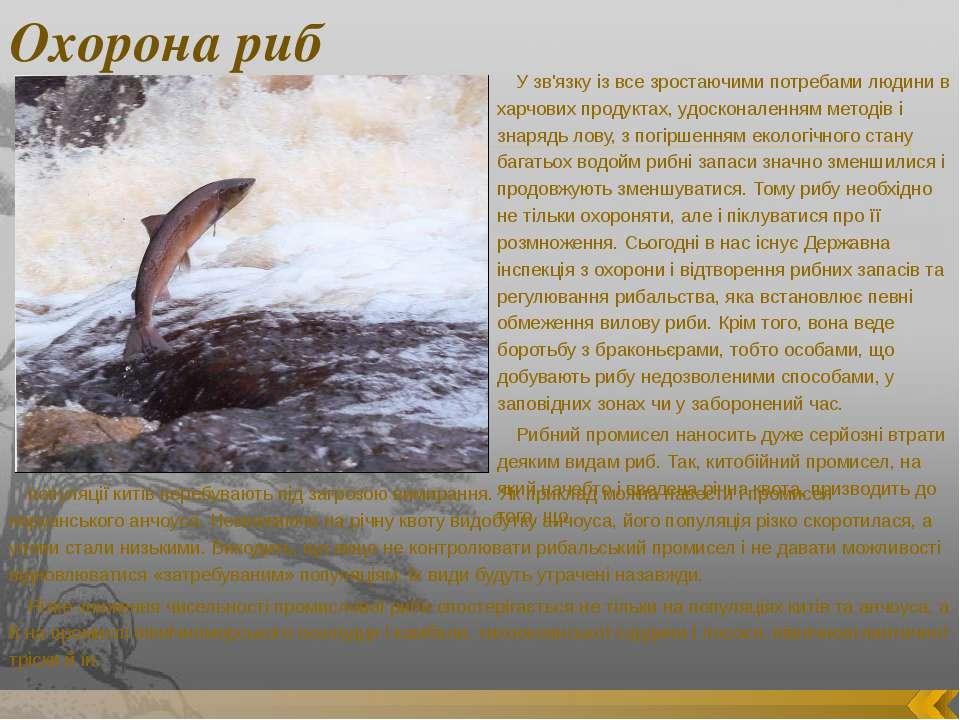 Охорона риб У зв'язку із все зростаючими потребами людини в харчових продукта...