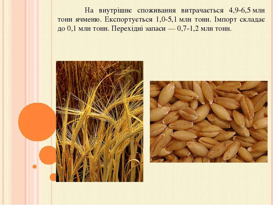 На внутрішнє споживання витрачається 4,9-6,5млн тонн ячменю. Експортується 1...