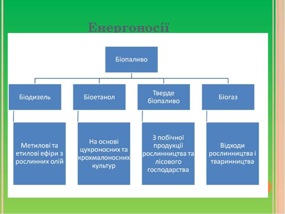 Енергоносії