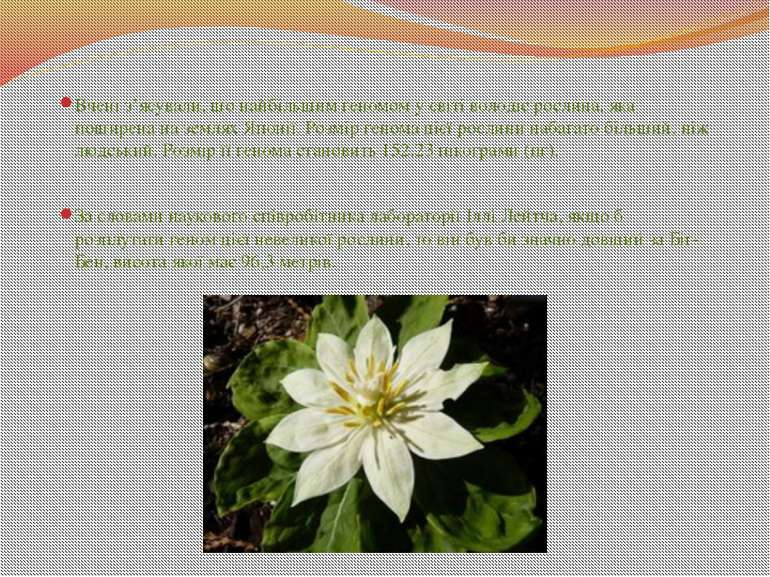 Вчені з'ясували, що найбільшим геномом у світі володіє рослина, яка поширена ...