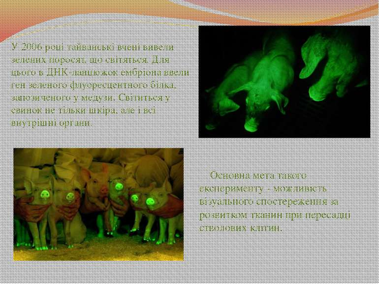 Основна мета такого експерименту - можливість візуального спостереження за ро...