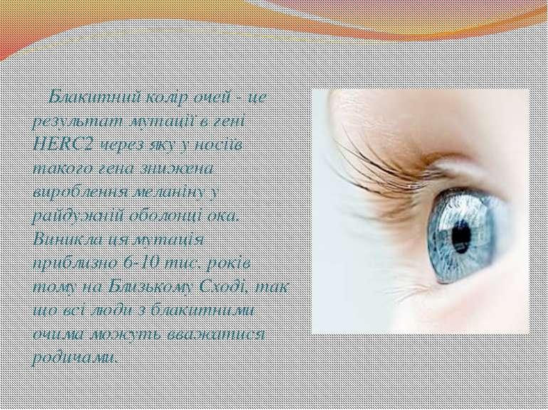 Блакитний колір очей - це результат мутації в гені HERC2 через яку у носіїв т...