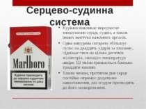 Серцево-судинна система Куріння викликає передчасне зношування серця, судин, ...