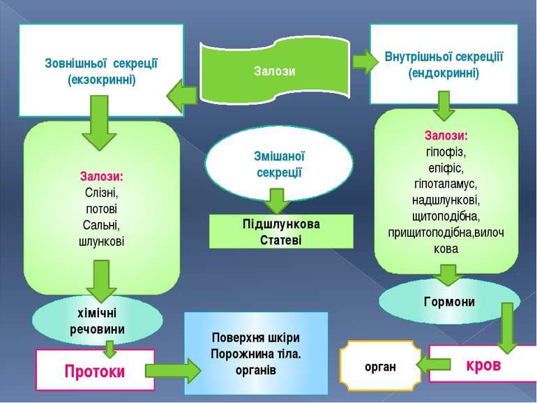 Залози Внутрішньої секреціії (ендокринні) Зовнішньої секреції (екзокринні) Зм...