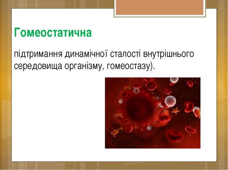 Гомеостатична підтримання динамічної сталості внутрішнього середовища організ...