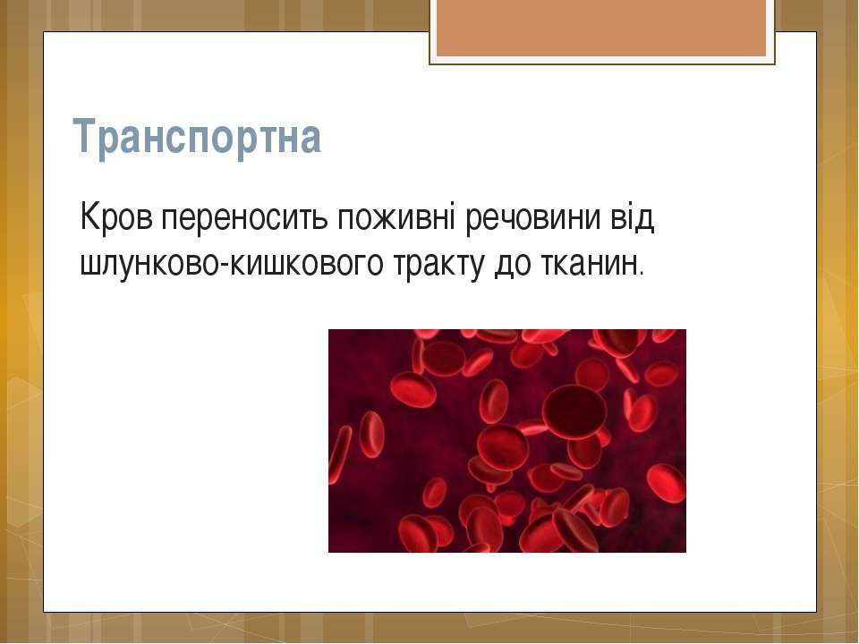 Транспортна Кров переносить поживні речовини від шлунково-кишкового тракту до...