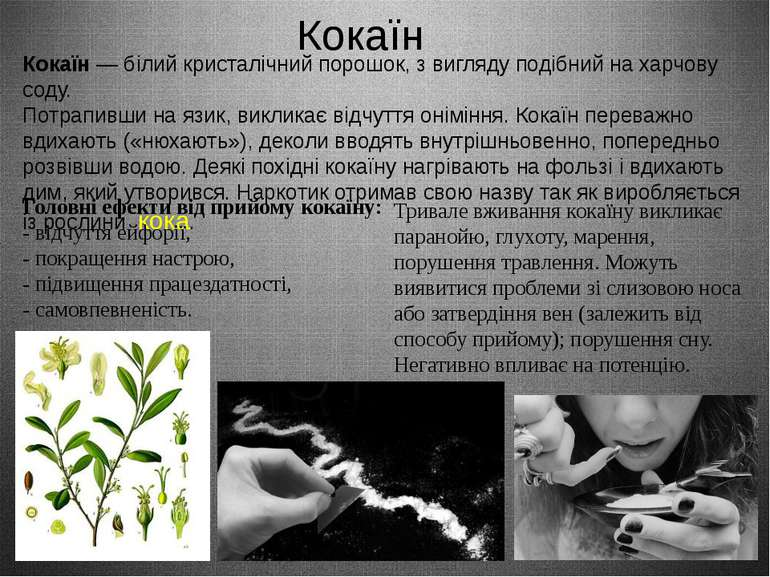 Кокаїн Кокаїн— білий кристалічний порошок, з вигляду подібний на харчову сод...
