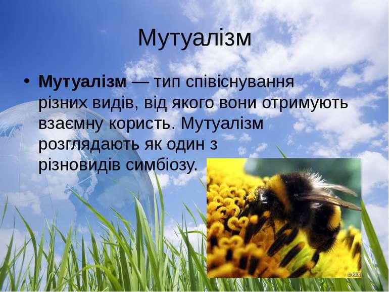Мутуалізм Мутуалізм— тип співіснування різнихвидів, від якого вони отримуют...