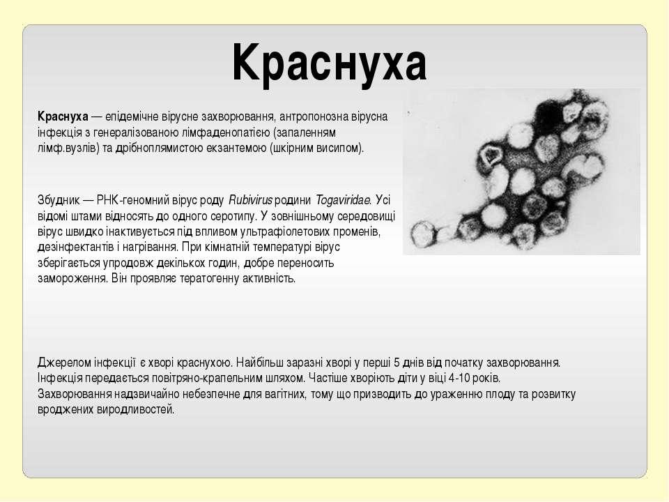 Краснуха Краснуха— епідемічневіруснезахворювання, антропонозна вірусна інф...