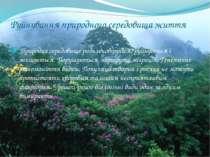 Руйнування природного середовища життя Природне середовище розчленовується, р...