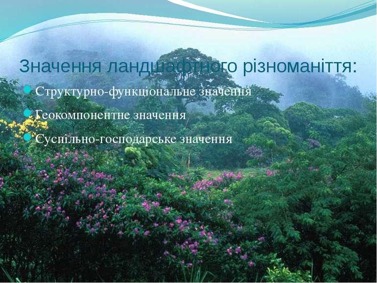 Значення ландшафтного різноманіття: Структурно-функціональне значення Геокомп...