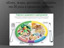 «Білки, жири, вуглеводи , вітаміни та ЇХ роль в організмі людини»