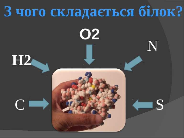 C H2 O2 N S З чого складається білок?