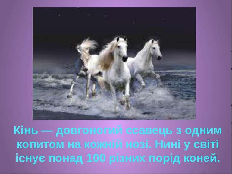 Кінь — довгоногий ссавець з одним копитом на кожній нозі. Нині у світі існує ...