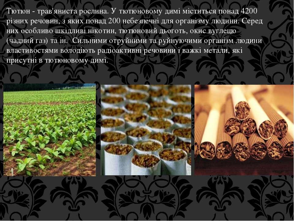 Тютюн - трав'яниста рослина. У тютюновому димі міститься понад 4200 різних ре...