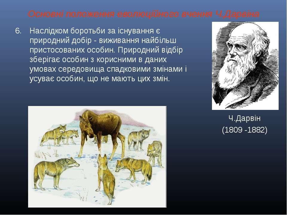 Основні положення еволюційного вчення Ч.Дарвіна Ч.Дарвін (1809 -1882) Наслідк...