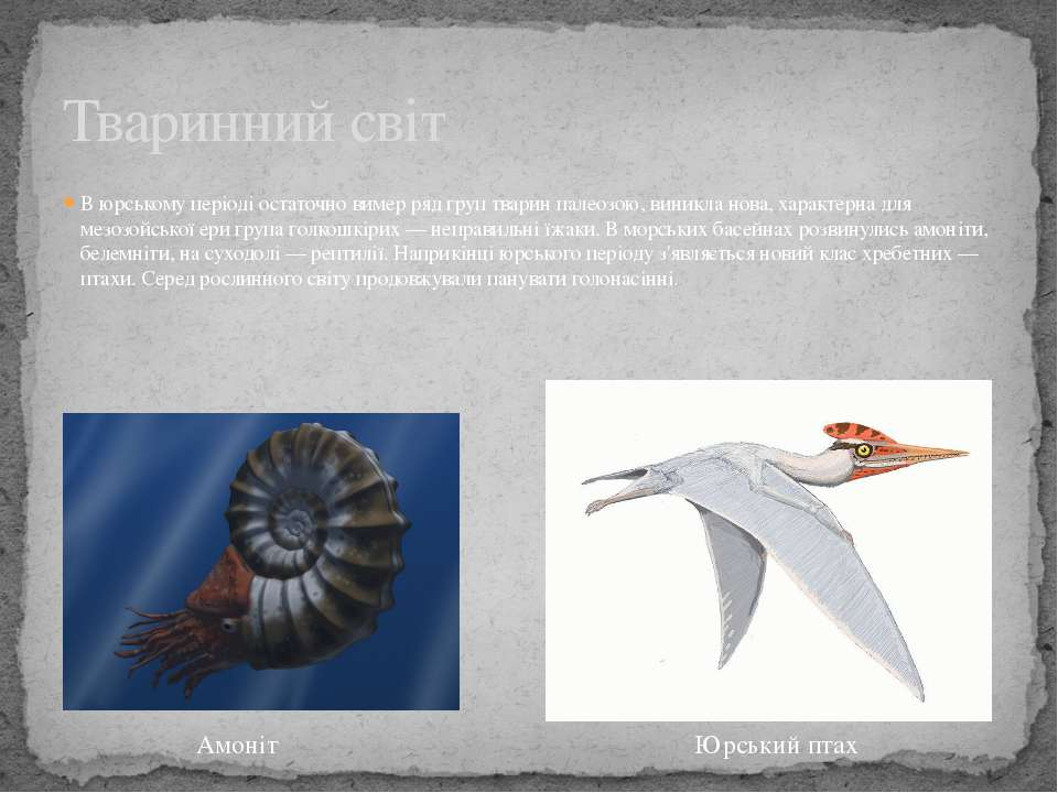 В юрському періоді остаточно вимер ряд груп тварин палеозою, виникла нова, ха...