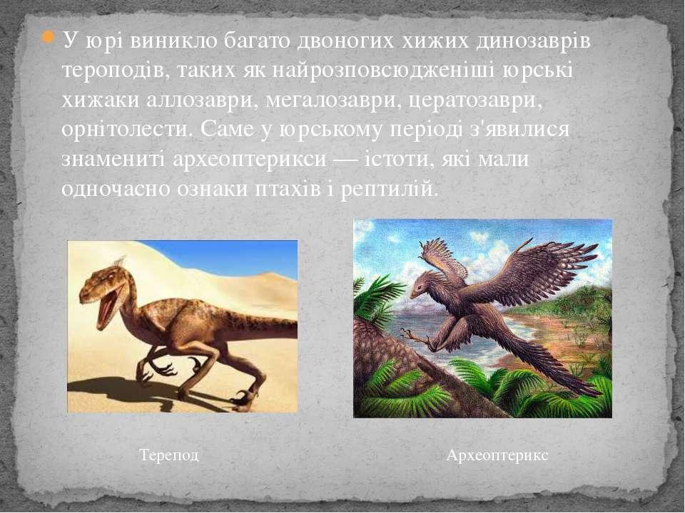 У юрі виникло багато двоногих хижих динозаврів тероподів, таких як найрозповс...