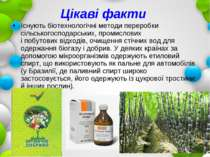 Цікаві факти Існують біотехнологічні методи переробки сільськогосподарських, ...