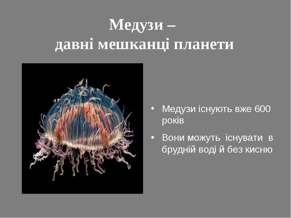 Медузи – давні мешканці планети Медузи існують вже 600 років Вони можуть існу...