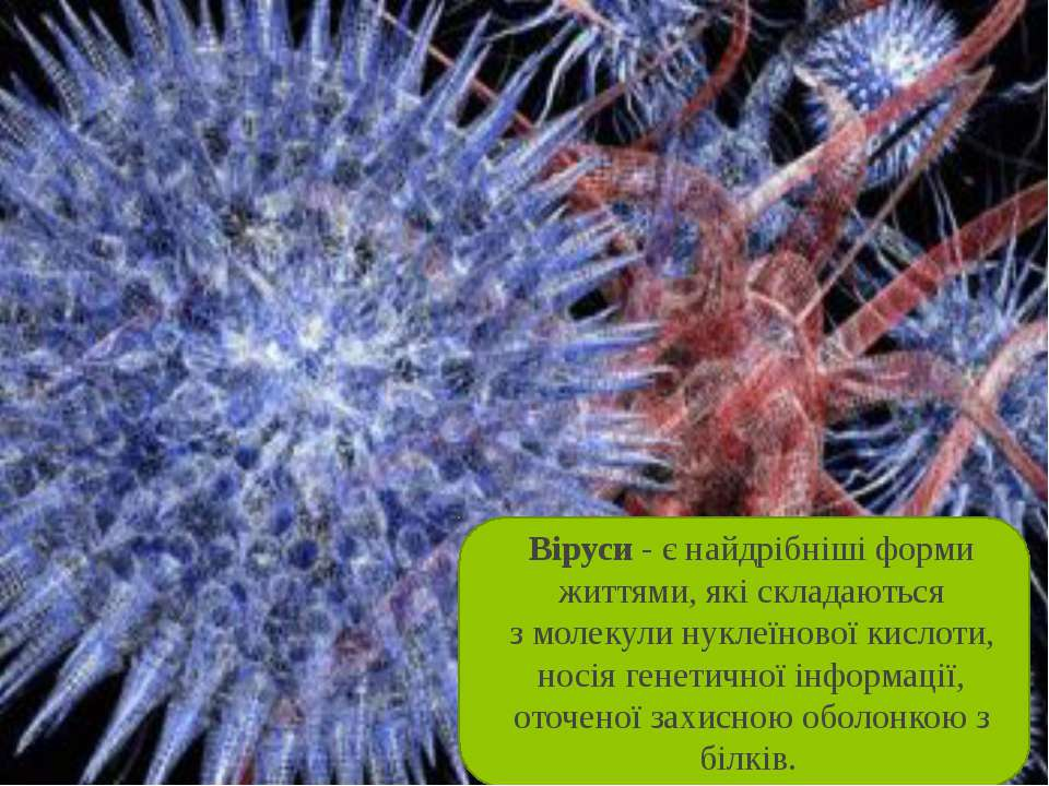 Віруси- є найдрібніші форми життями, які складаються змолекулинуклеїнової ...
