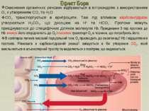 Ефект Бора Окиснення органічних речовин відбувається в мітохондріях з викорис...