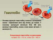 Гемоглобін: Основна функція гемоглобіну полягає в зв'язуванні кисню і перенес...
