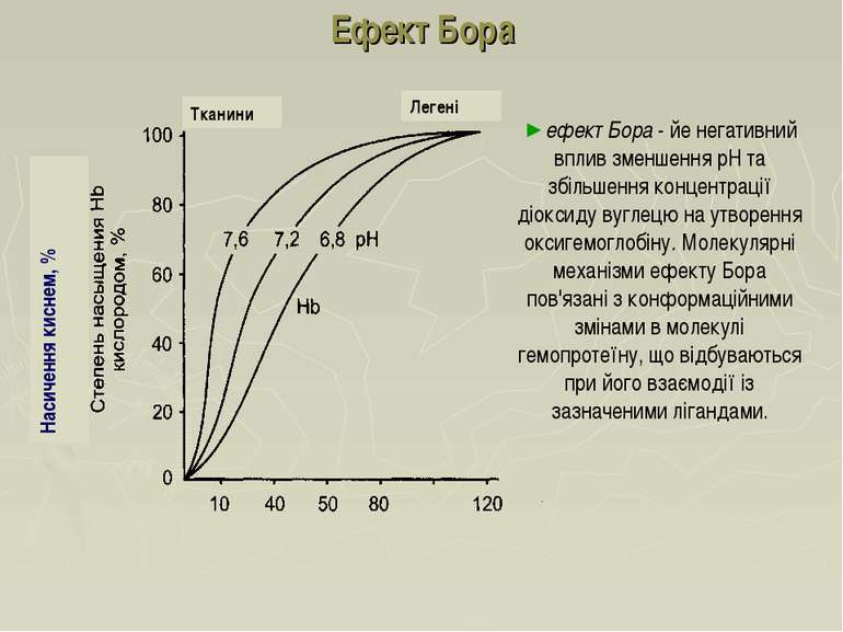 Ефект Бора ефект Бора - йе негативний вплив зменшення рН та збільшення концен...
