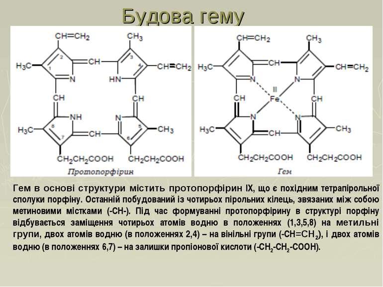 Гем в основі структури містить протопорфірин IX, що є похідним тетрапірольної...