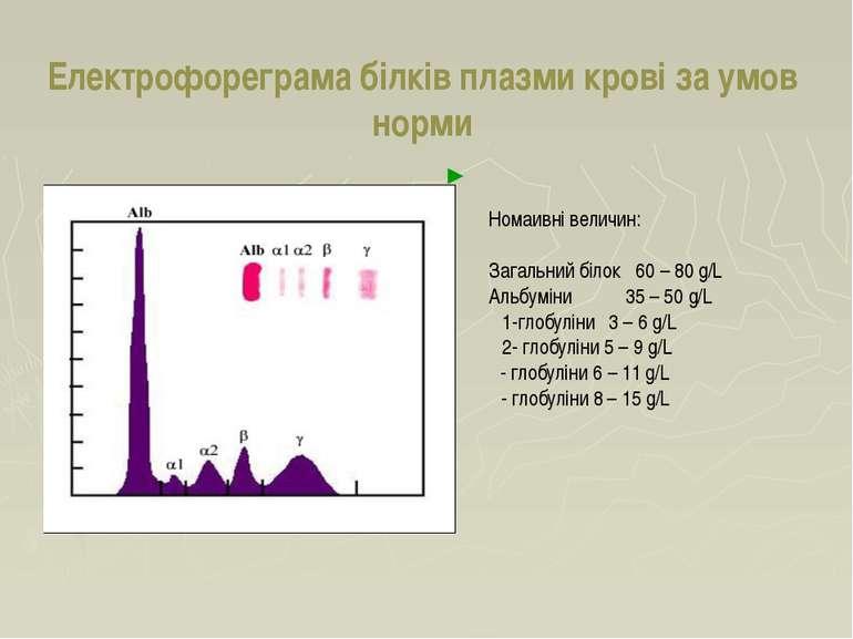 Електрофореграма білків плазми крові за умов норми Номаивні величин: Загальни...