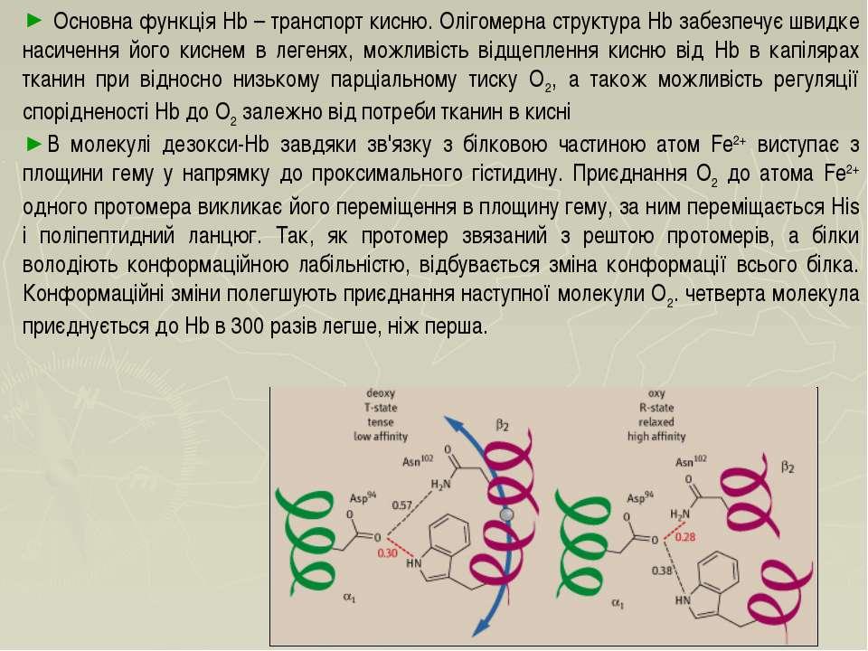 Основна функція Hb – транспорт кисню. Олігомерна структура Hb забезпечує швид...
