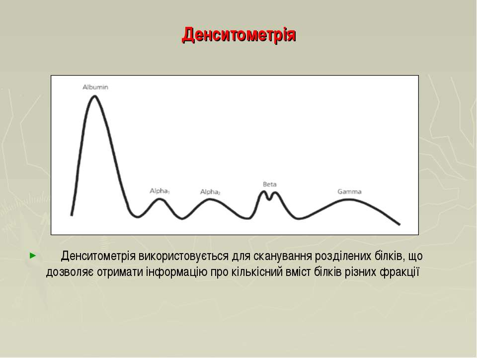 Денситометрія Денситометрія використовується для сканування розділених білків...