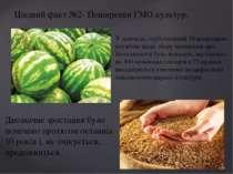 Цікавий факт №2- Поширення ГМО культур. У доповіді, опублікованій Міжнародною...