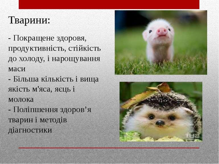 Тварини: - Покращене здоровя, продуктивність, стійкість до холоду, і нарощува...