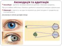 Акомодація та адаптація Акомодація - здатність ока фокусуватися на далеких і ...