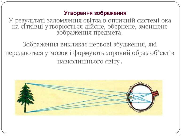 Утворення зображення У результаті заломлення світла в оптичній системі ока на...