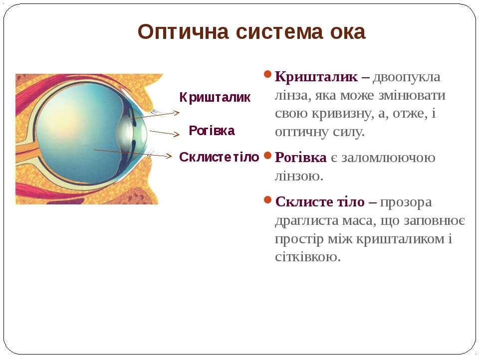 Оптична система ока Кришталик – двоопукла лінза, яка може змінювати свою крив...